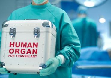 L'impegno ANDI e Fondazione ANDI Onlus a sostegno della donazione organi